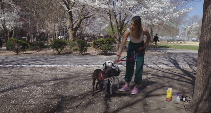 Meet the Pets: Olympian Monica Aksamit